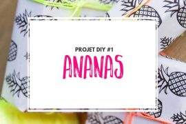 projet-diy-ananas-participations
