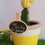 cache-pot-citron-diy